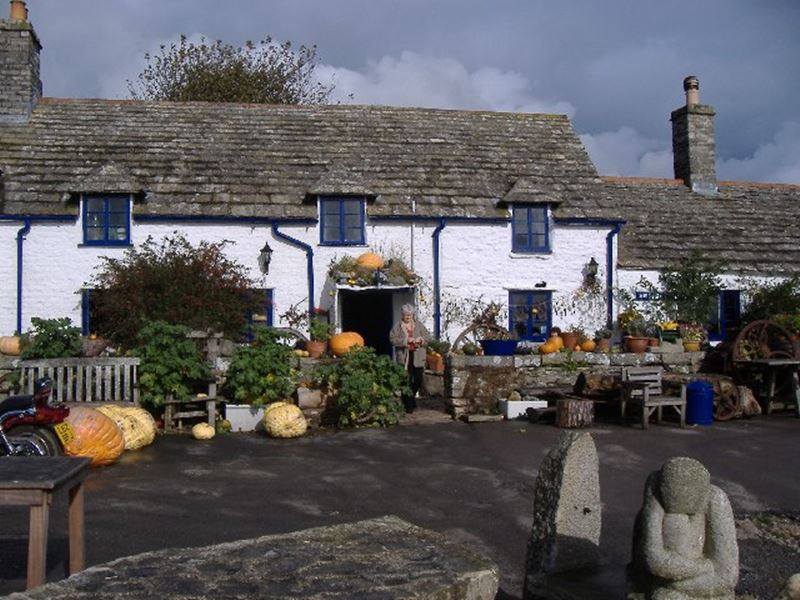 Camping near The Square and Compass Pub, Worth Matravers on the Jurassic Coast, Dorset